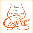 logo-BNIC